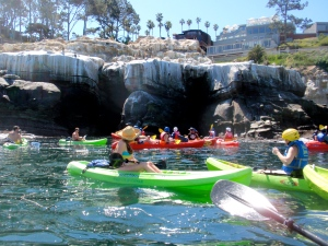 Kayaking at the sea caves