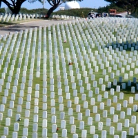 Serene Resting Place  ~  Fort Rosecrans National Cemetery