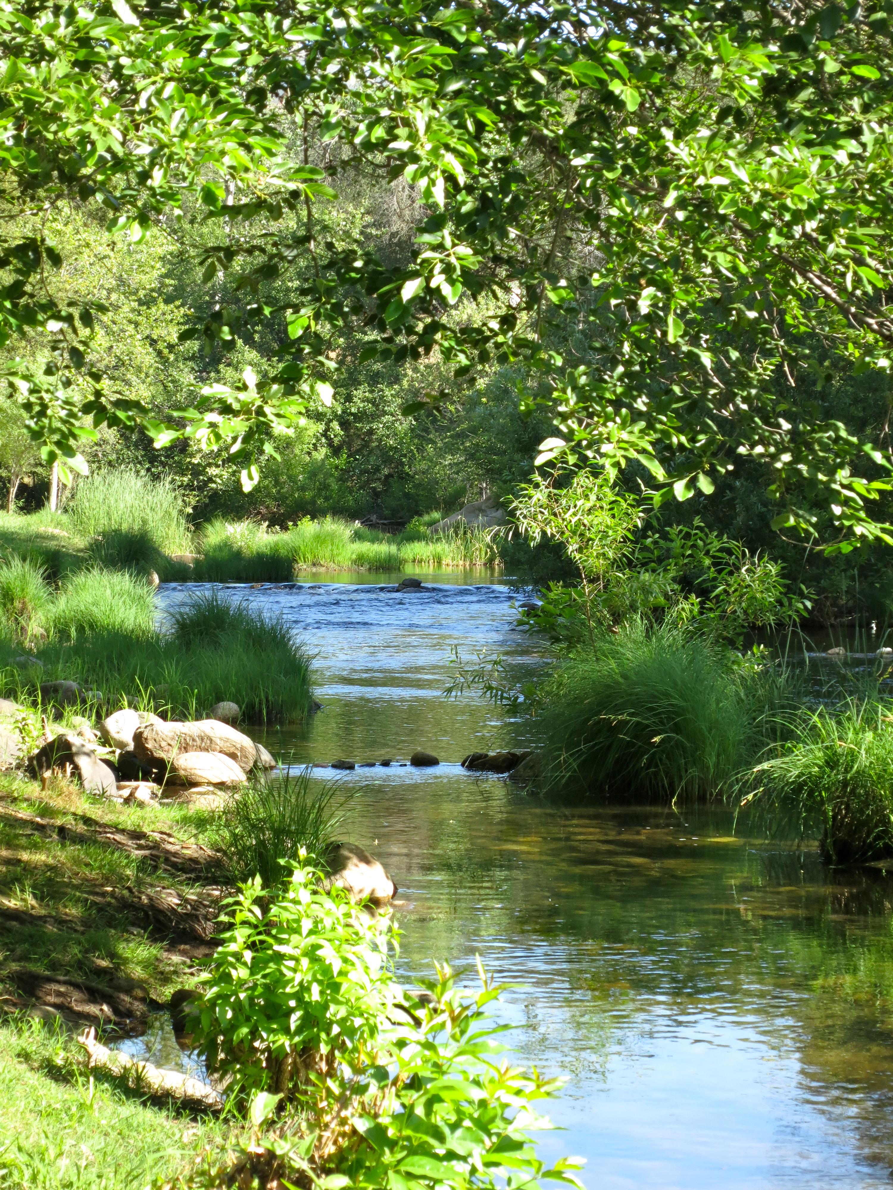 Livin Near Giants Sequoia Rv Ranch Three Rivers Ca