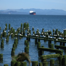 Where the Columbia River Meets the Pacific Ocean ~ Astoria, OR