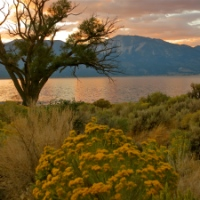 Symphony at Sunset ~ Washoe Lake State Park, NV