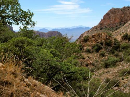 Santa Catalina Mtn hike ~ Tucson, AZ