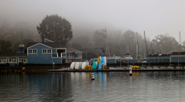 An unusually quiet harbor on a foggy day