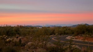 A desert awakening at Cave Creek Regional Park