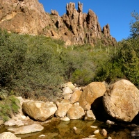 In Search of the Proverbial Needle ~ Superstition Mountains, Apache Junction, AZ