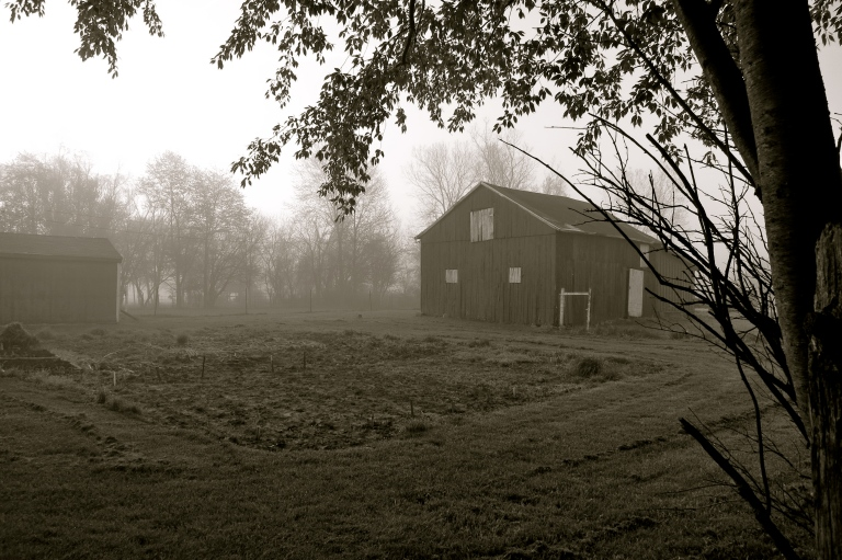 barn in early morning fog