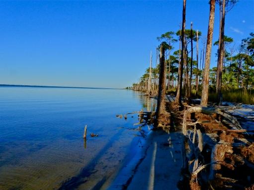Cool blue bayside