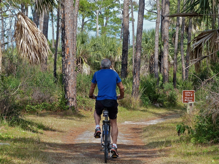 Biking the nature trail,on the hunt for osprey