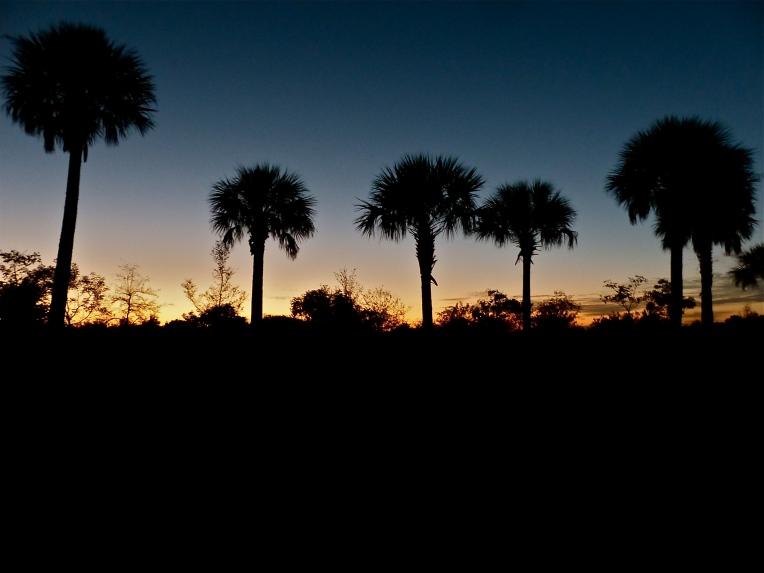 Markham sunset