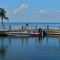 A Little Slice of Paradise ~ The Florida Keys