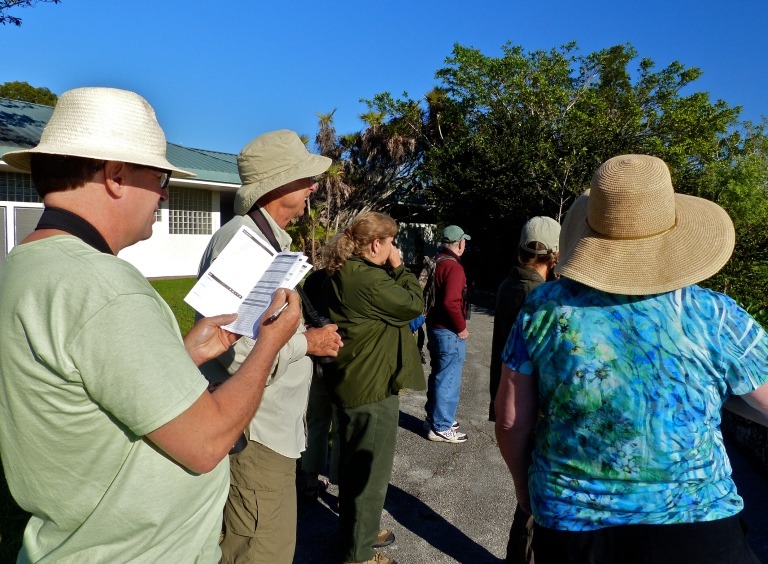 Ranger Christi (center) pointing out anhingas nesting in the surrounding trees