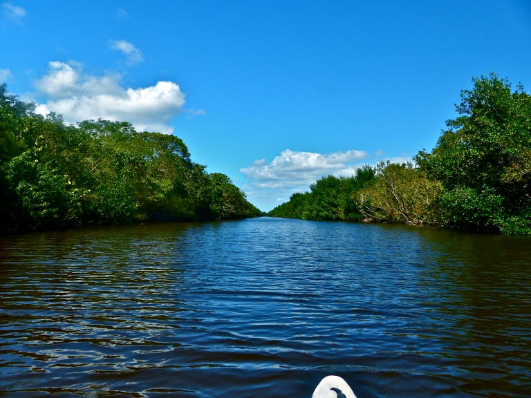 Traversing the Buttonwood Canal - a much different feel from the open Florida Bay