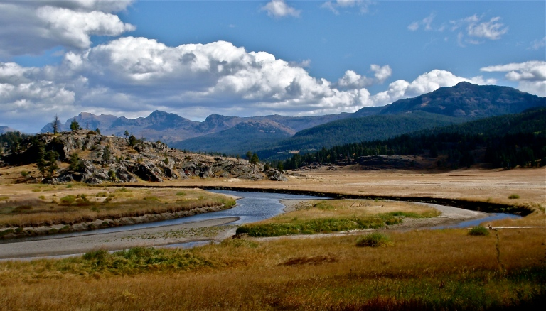 Yellowstone National Park ~ WY/MT