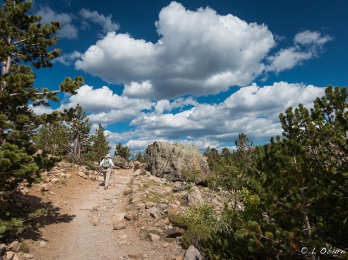 Big skies and pine-filled lungs
