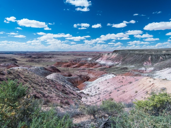 The Painted Desert lies far off in the distance.