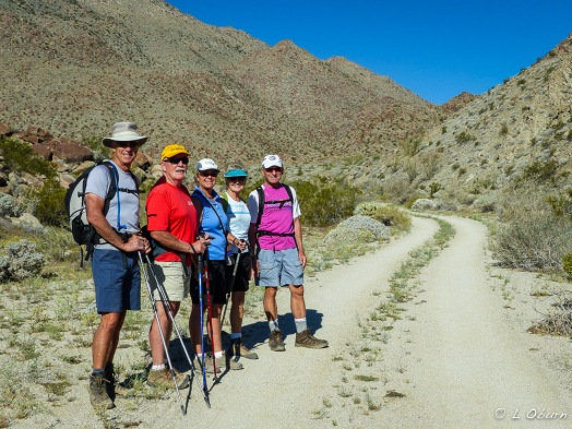 The gang ready to head into Glorietta Canyon, where we found many of our flowering cacti.