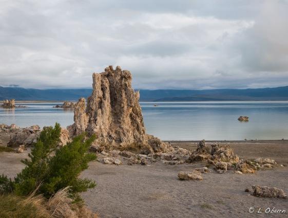 Mono Lake_150520-1200681