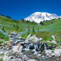 Hiking Extravaganza~ Mt. Rainier National Park