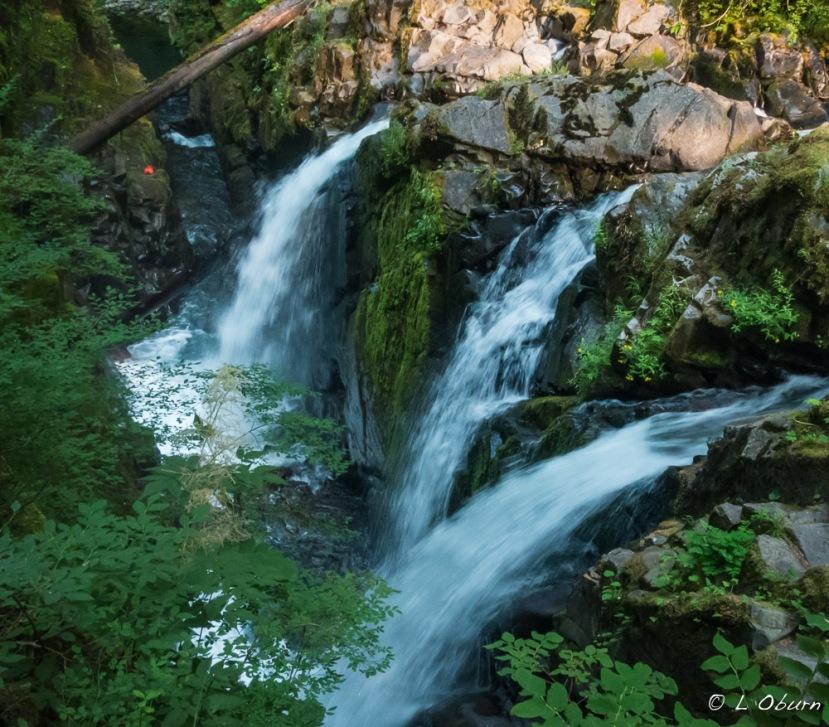 Tidepools, Waterfalls, Moody Beaches ~ Olympic NationalPark