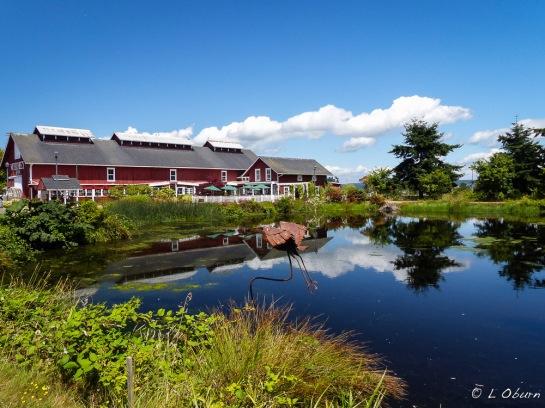 Gorgeous Greenbank Farm