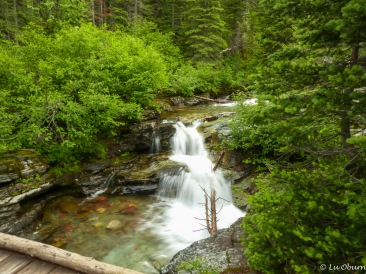 Rapids cascading down from Ptarmigan Lake