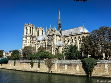Notre Dame with a view of the Rose window