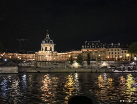 Beautifully lit monuments and buildings along the Seine