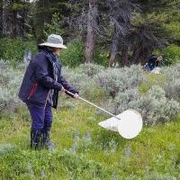 Citizen Science ~ Yellowstone Forever Field Seminar Series