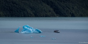 Perspective of iceberg size next to tour boat