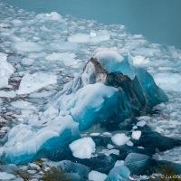 Blue Ice & Depth Charges ~ Perito Moreno Glacier