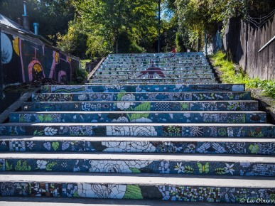 Many local artist shops found in Puerto Varas, with a mosaic-lined stairway to get to them.