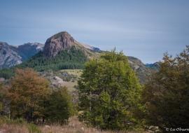 Lanin National Park