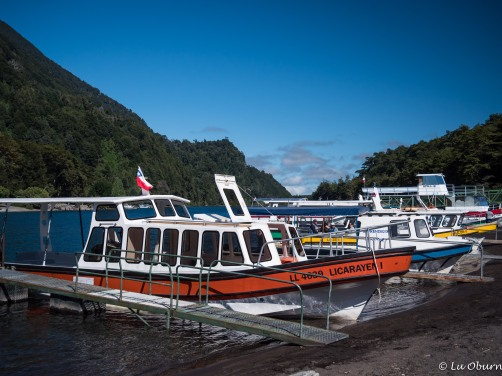 Tour boats waiting to carry passengers across Lago Todos los Santos, the lake Teddy Roosevelt crossed in 1913.