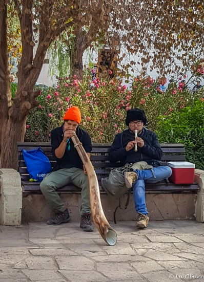 Two talented young locals on the didgeridoo and the flute.